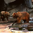 Kodiak Bear Pair by Jay Gross