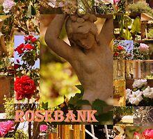 greetings from rosebank by Karen  Martin