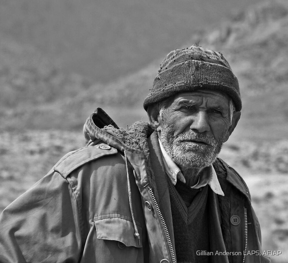 Shepherd by Gillian Anderson LAPS, AFIAP