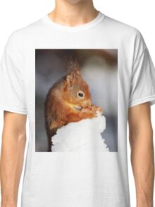 Red Squirrel with nut in snow Classic T-Shirt