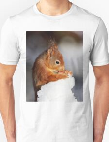 Red Squirrel with nut in snow T-Shirt