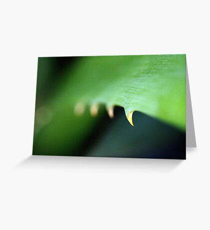 Green Spike Leaf Greeting Card