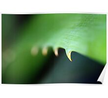 Green Spike Leaf Poster