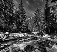Little Cottonwood River in Black and White by Alan Mitchell