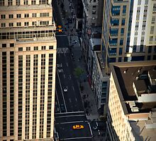 Fifth Avenue by Dohmnuill