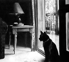 Home by Erin McCrorey