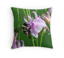 Bee on  Columbine Flower Throw Pillow