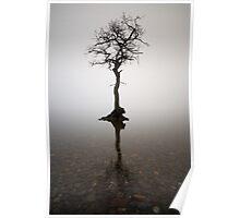 The Loch Lomond Tree Poster