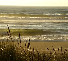 Pacific Beach North California by Sturmlechner