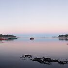 Panorama of Strahan from Risby Cove by nealbrey