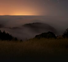Pacific Fog  by MattGranz