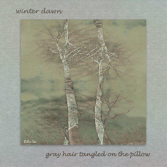 Winter Dawn by billiedee
