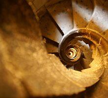 Inside Sagrada Familia by Sturmlechner