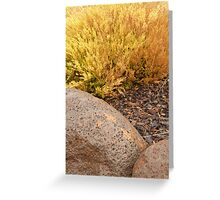 rocky colours Greeting Card