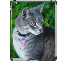 Bethesda cat iPad Case/Skin