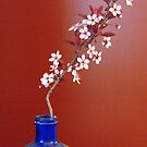 Sand Cherry In A Blue Bottle by Tracy Faught