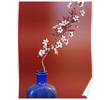 Sand Cherry In A Blue Bottle Poster