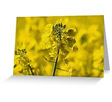 Very Yellow with Liquid Lines texture Greeting Card