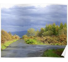 Rain Clouds And Gorse.................................Ireland Poster