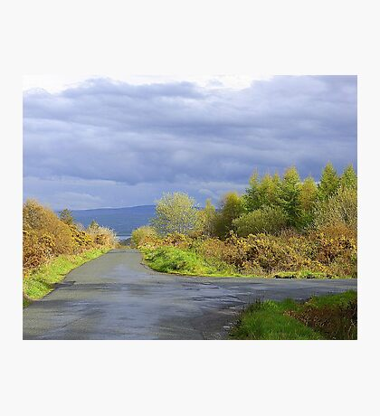 Rain Clouds And Gorse.................................Ireland Photographic Print