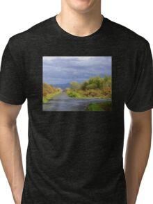 Rain Clouds And Gorse.................................Ireland Tri-blend T-Shirt