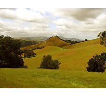 Sentinal of Sunol Valley, Flag Hill, Sunol Regional Wilderness, CA 2015 Photographic Print