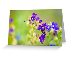Blue Flowers in the Meadow Greeting Card