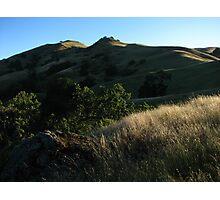 Morning Light, Sky Camp, Sunol Regional Wilderness, CA 2015 Photographic Print