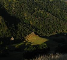 California Hills, Sunol Regional Wilderness, CA 2015 by J.D. Grubb
