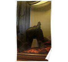 Zentai Through the Looking Glass 1 Poster
