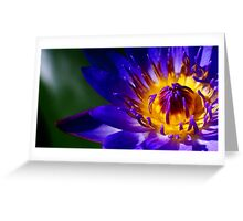 Purple and Yellow with Hint of Blue Greeting Card