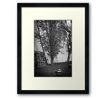 Secret Garden BW Framed Print