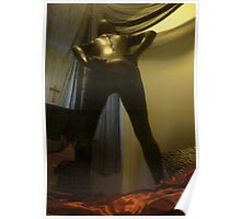 Zentai Through the Looking Glass 9 Poster