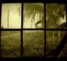 Growing Panes by Devan Abernathy