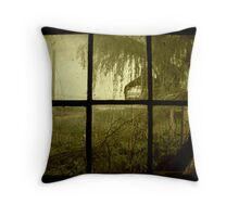 Growing Panes Throw Pillow