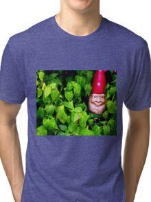 Gnomes Series 3 Tri-blend T-Shirt