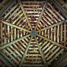 Gazebo Ceiling by Tracy DeVore