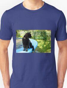 black outdoor cat  T-Shirt