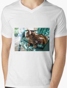 fat cat sitting outside T-Shirt