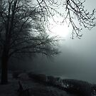 Winter Fog on a Lake by Daidalos