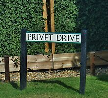 Privet Drive by clarebearhh
