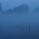 At the river of blue dreams by jchanders