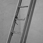Old Ladder by John Fleming