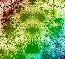 Symmetry Burst by Signer