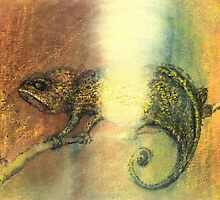 Chameleon and Light by Antea