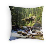 Johnny Creek Throw Pillow