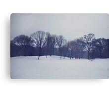 Snow in Prospect Park Canvas Print