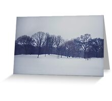 Snow in Prospect Park Greeting Card