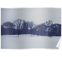 Snow in Prospect Park Poster