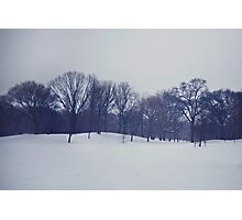 Snow in Prospect Park Photographic Print